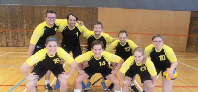 24. ÖM Volleyball Mixed 2015